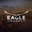 eagle-fight