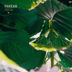 fakear-vegetal